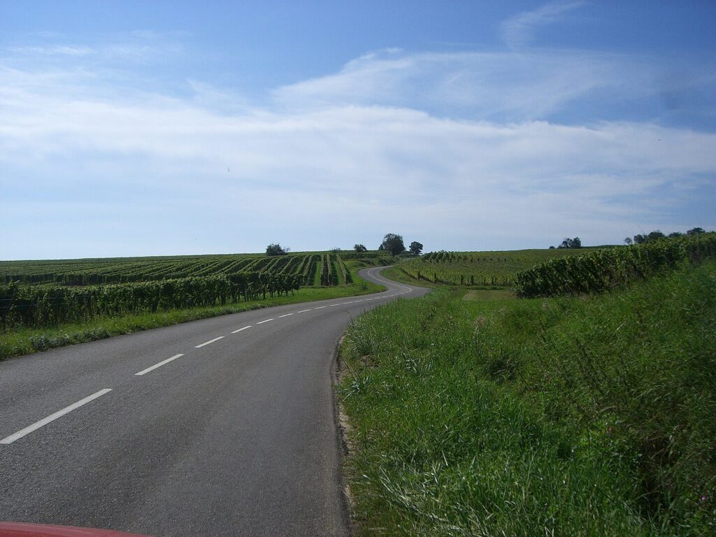 Alsace wine road